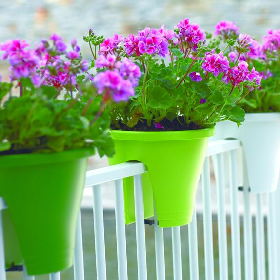 corsica flower bridge 30cm greene. Black Bedroom Furniture Sets. Home Design Ideas