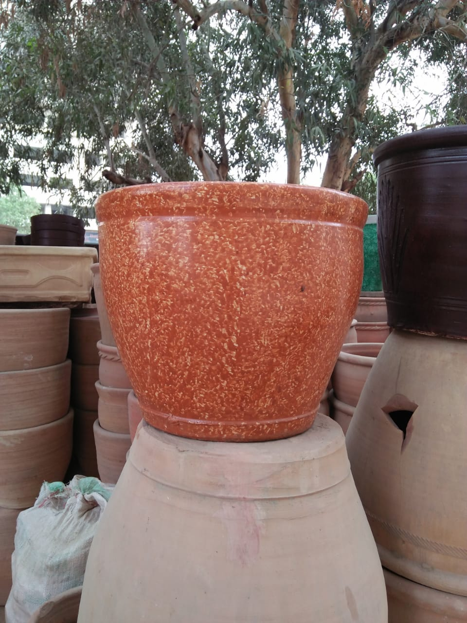 Mud Pot 5