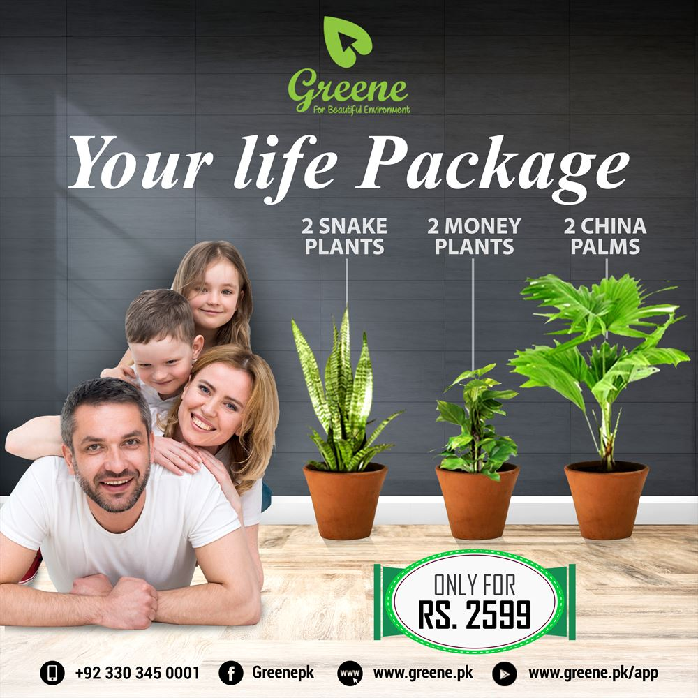 Your life Package