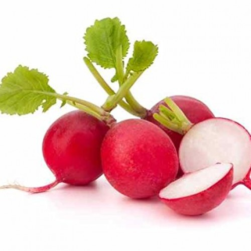 Radish round and red Seeds