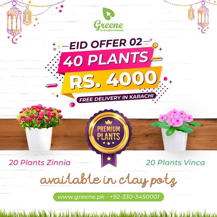 Eid Offer 02