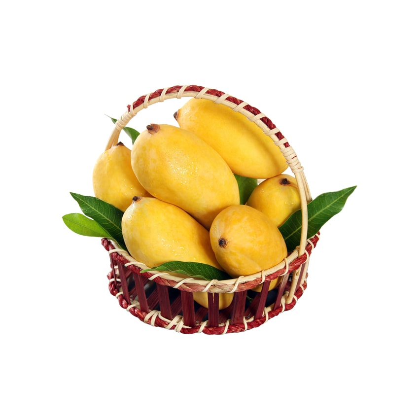 Sindhri Mangoes - 10 KG - Retail Package
